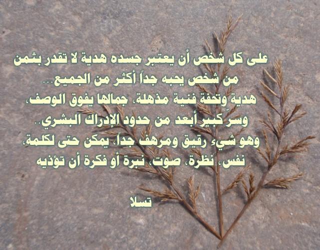 http://www.alaalsayid.com/downloads/tesla_ar/11.jpg