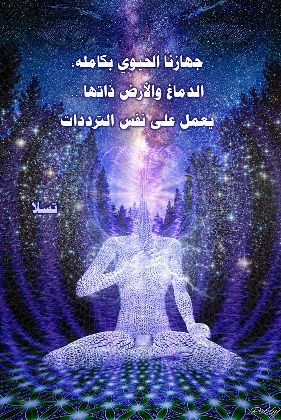 http://www.alaalsayid.com/downloads/tesla_ar/21.jpg