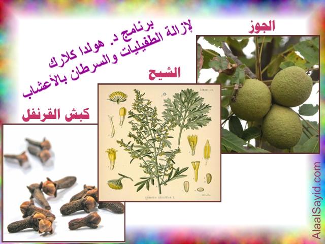http://www.alaalsayid.com/images/articles/Hulda%20Parasites%20Herbs%20program.jpg