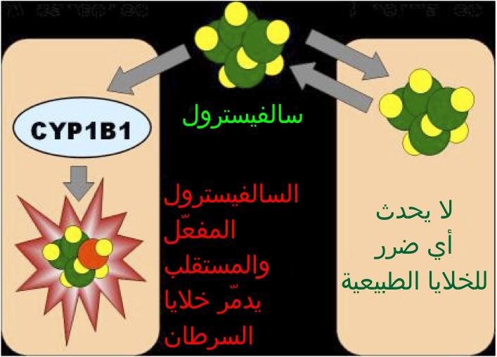 http://www.alaalsayid.com/images/articles/cancerfungus/salvestrols.jpg