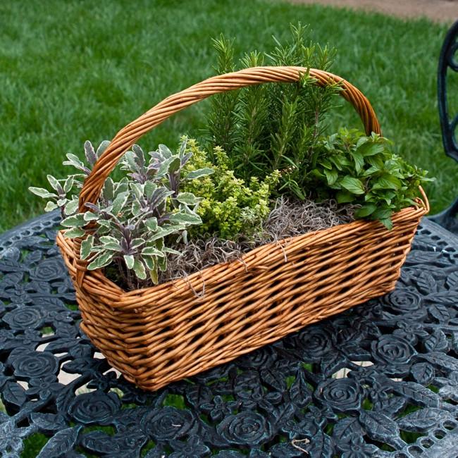 http://www.alaalsayid.com/images/articles/herbs-basket-s.jpg