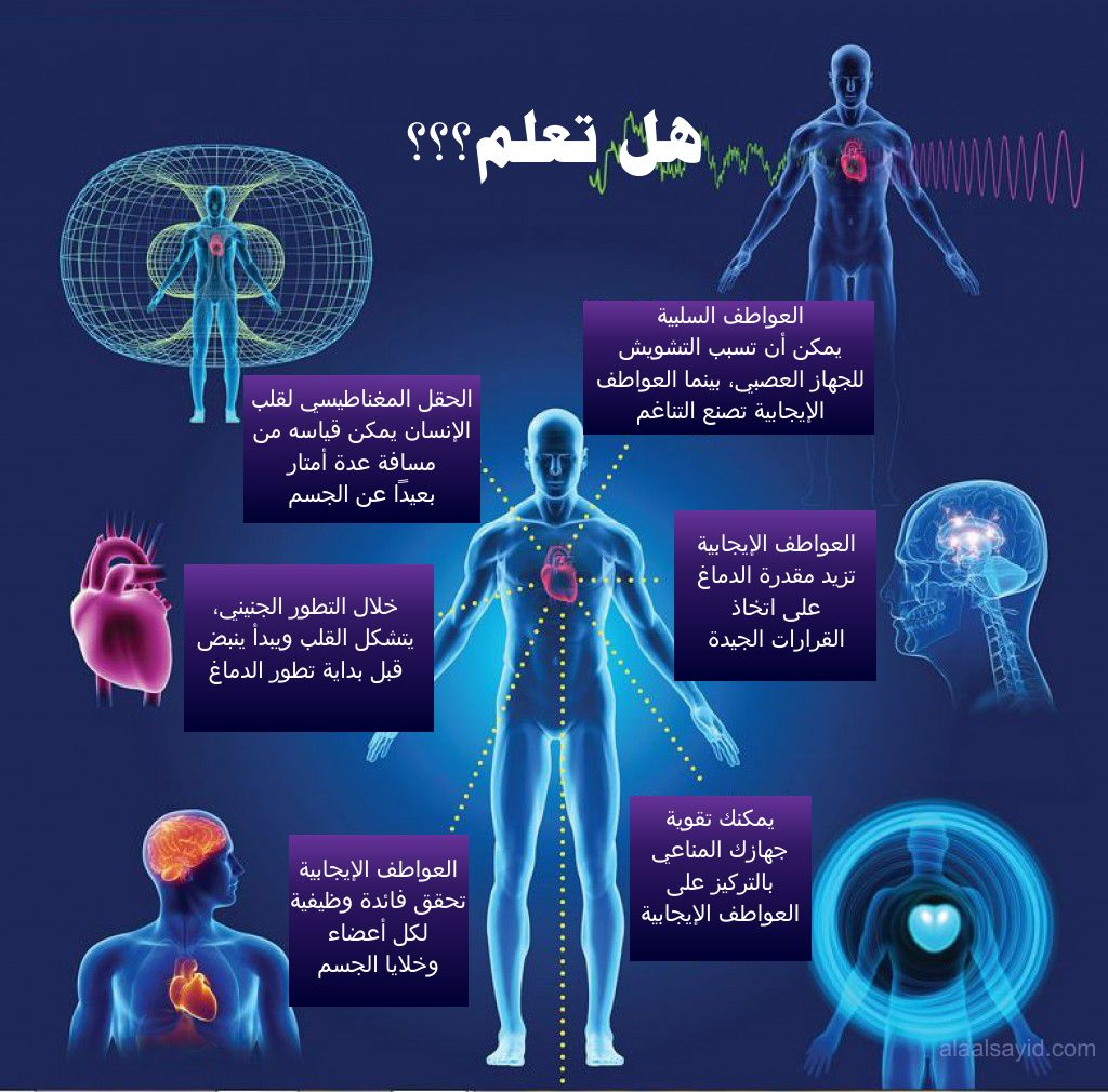 http://www.alaalsayid.com/images/articles/keys%20to%20peace/heartmath-infographic-Ar.jpg