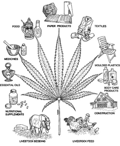 http://www.alaalsayid.com/images/articles/nowheat/hemp%20uses.jpg