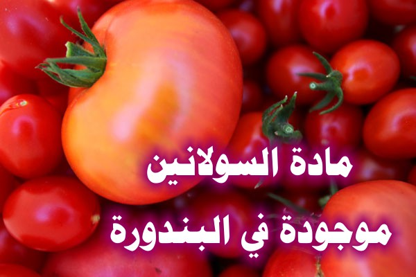 http://www.alaalsayid.com/images/articles/tomato/12.jpg