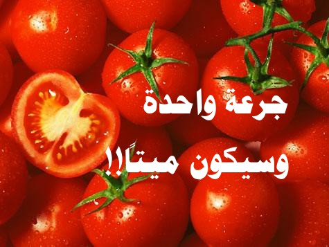 http://www.alaalsayid.com/images/articles/tomato/5.jpg