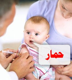 http://www.alaalsayid.com/images/articles/vaccin%20hmar%20web.jpg